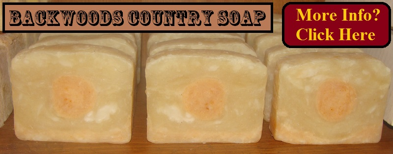 New Vegan Soap - Harvest Moon